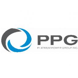 PLATINUM POWER GROUP